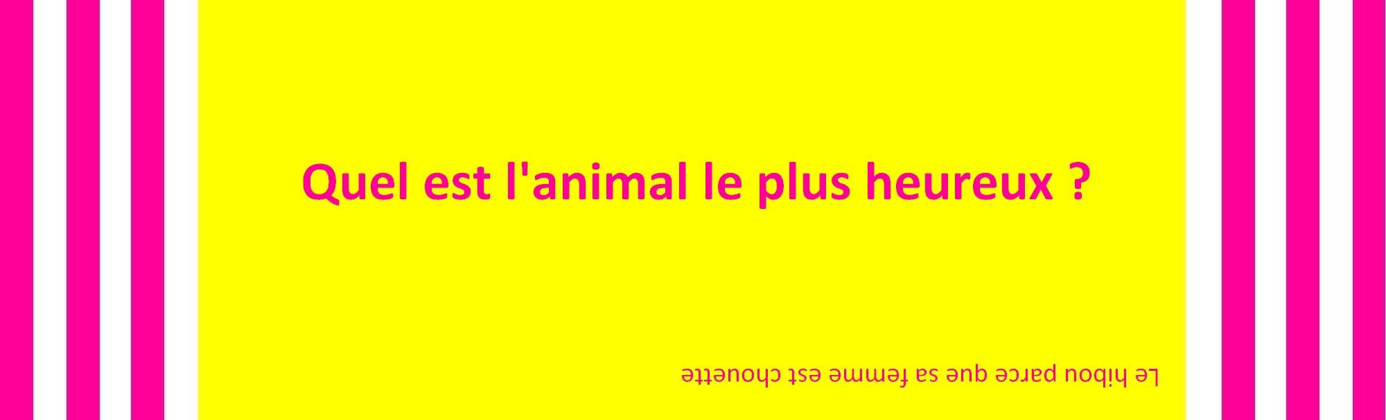 Compilation de blagues en français et dhistoires drôles